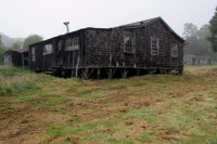 The backside of Pua 'Akala Cabin & remnants of garden furrows.