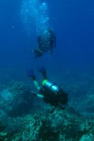 Don and Deb over coral at Puako. By ©2010 Andrew Cooper.